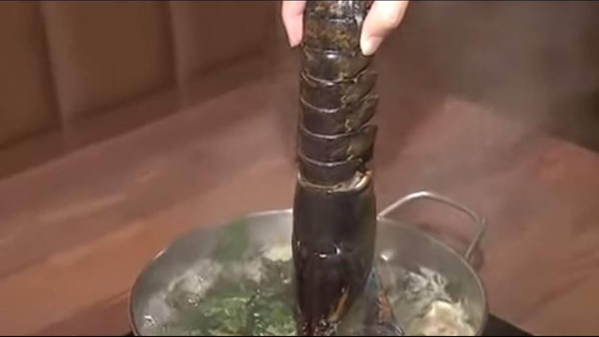 豪華海陸鍋來了! 鱈場蟹、龍蝦V.S.和牛吃到飽
