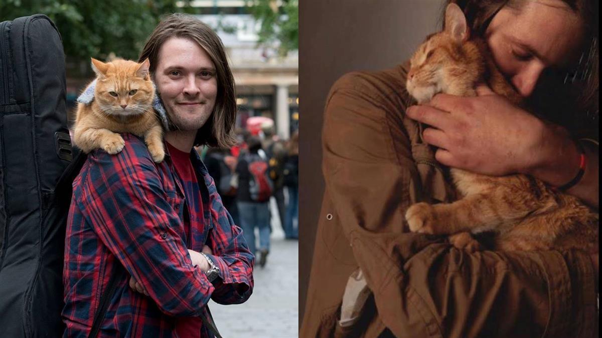 街貓Bob過世了!陪伴13年…主人心痛送最後一程