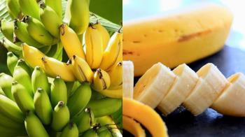 香蕉到底要早上吃還晚上吃?瘦身人必備「香蕉瘦身小知識」大公開:吃對方式有效阻斷爆食慾~